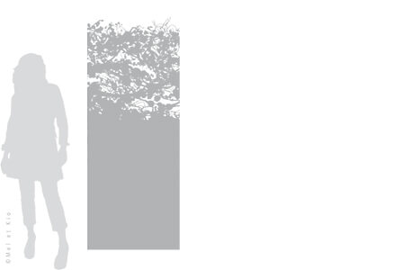 vitrophanie-depoli-vegetal-V3L-Mel-et-Kio