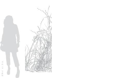 vitrophanie-depoli-vegetal-V10L-Mel-et-Kio