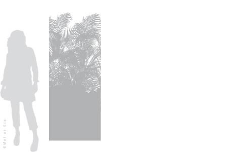 vitrophanie-depoli-vegetal-V5L-Mel-et-Kio