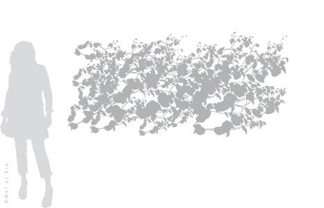 vitrophanie-depoli-vegetal-V7XL-Mel-et-Kio